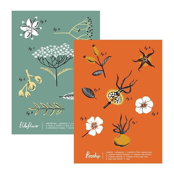 Zestaw 2 ścierek kuchennych Flora Rosehip