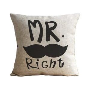 Poszewka na poduszkę Mr. Moustache, 45x45 cm