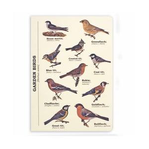 Notes Gift Republic Garden Birds, rozm.A5