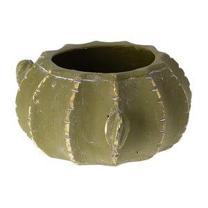 Donica Cactus, 21 cm