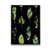 Plakat z liśćmi, czarne tło, 30 x 40 cm