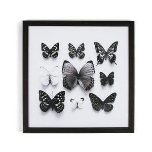 Obraz w ramie Graham & Brown Butterfly Studies, 50x50 cm