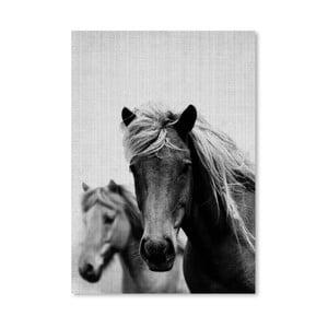 Plakat Wild Horses