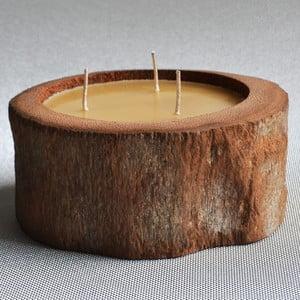 Palmowa świeczka Legno z woskiem pszczelim, 40 godzin palenia, 20 cm