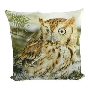 Poduszka Owl 50x50 cm