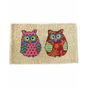 Wycieraczka Two Owls, 73x43 cm