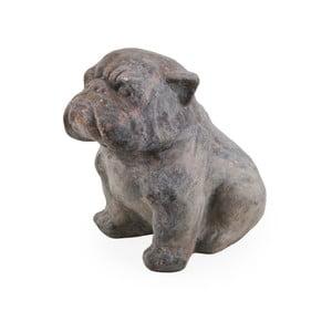 Dekoracyjny pies Moycor Marsella