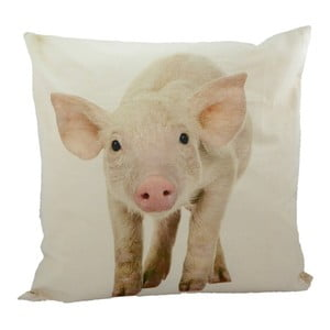 Poduszka Pig 50x50 cm