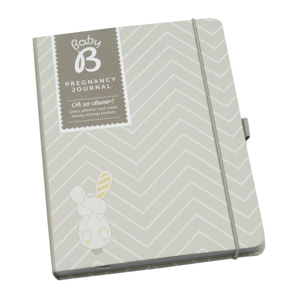 Dziennik ciążowy Pregnancy Journal