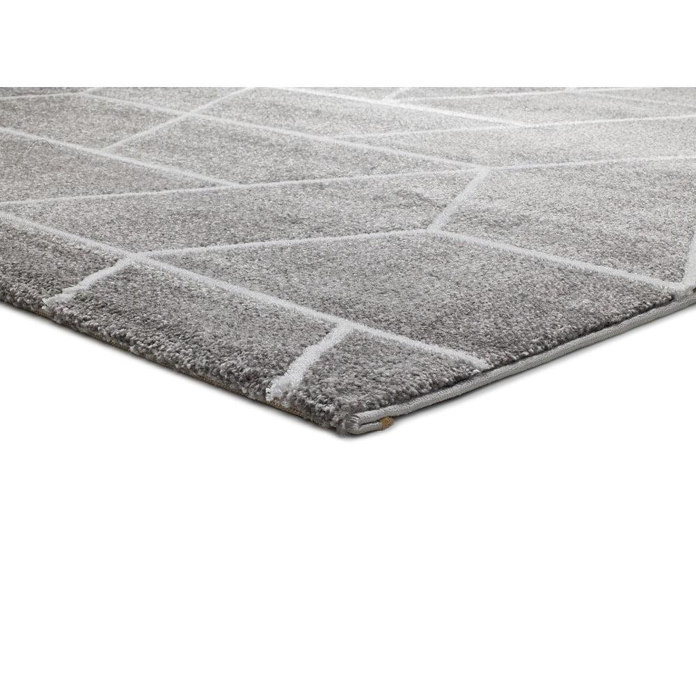 Szary dywan Universal Chance Griso, 160x230 cm