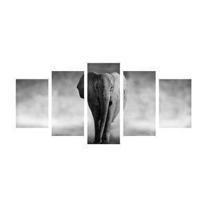 Wieloczęściowy obraz Black&White Elephant, 100x50 cm