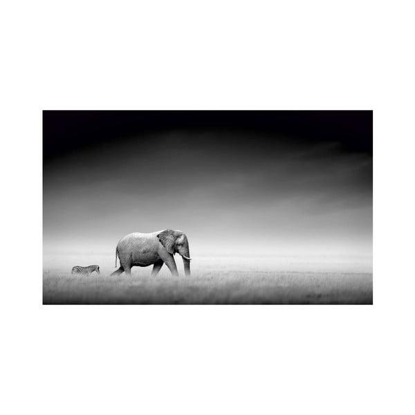 Obraz Black&White no. 22, 41x70 cm