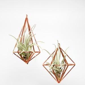 Zestaw 2 terrariów wiszących z roślinami Prism