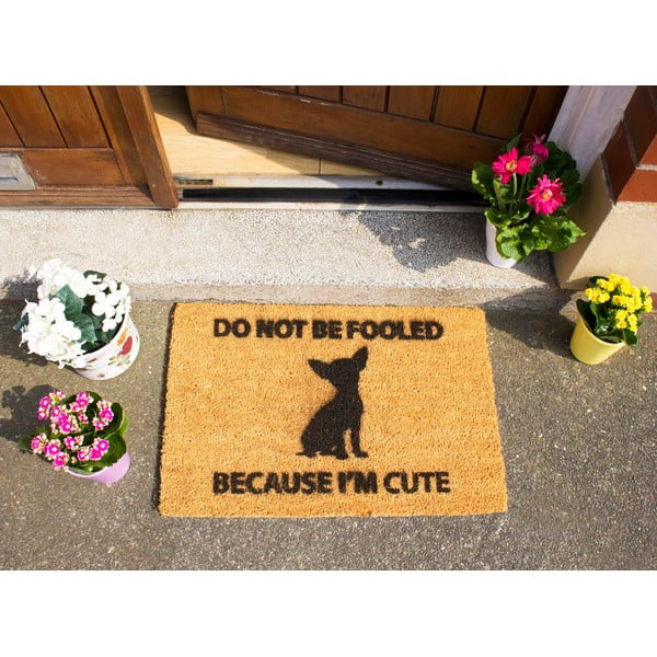Wycieraczka Artsy Doormats Chihuahua, 40x60 cm