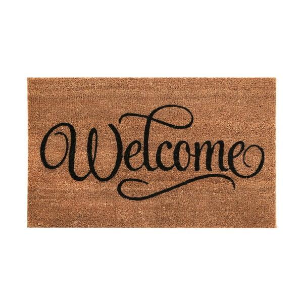Wycieraczka Welcome, 40x60 cm