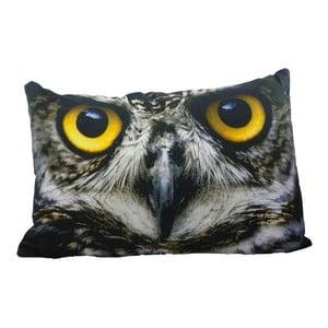 Poduszka Owl 60x40 cm