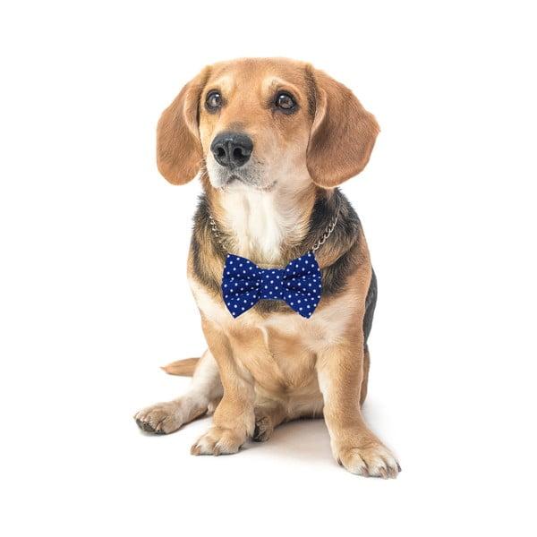 Mucha dla psa Funky Dog Bow Ties, roz. L, niebieska w kropki
