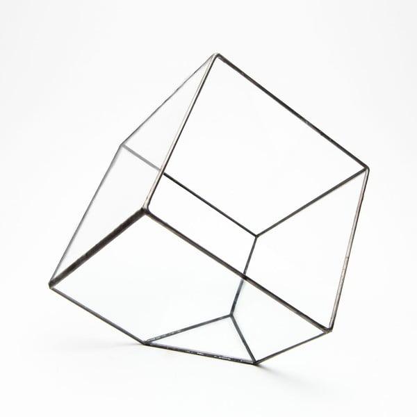 Terrarium z roślinami Cube