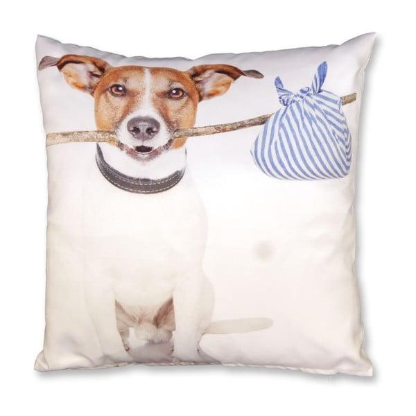 Poduszka Doggy no. 3, 45x45 cm