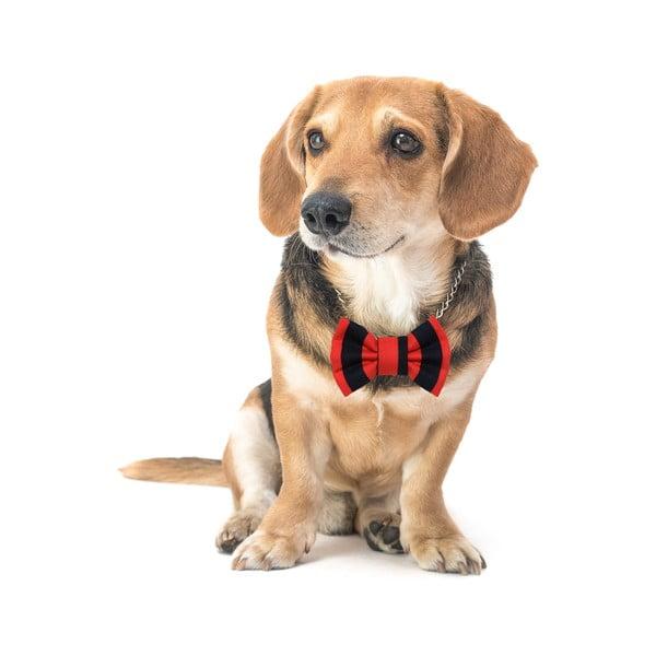 Mucha dla psa Funky Dog Bow Ties, roz. S, czerwono-czarna