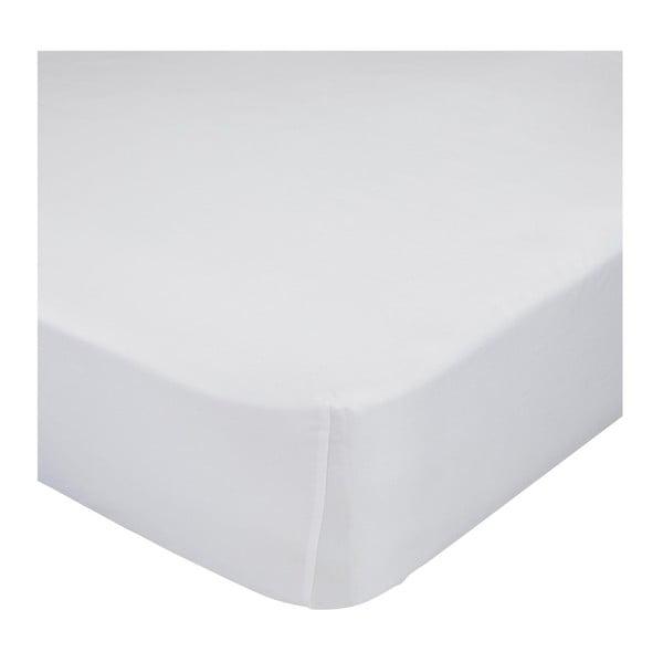 Białe prześcieradło elastyczne z bawełny Mr. Fox Happynois, 70x140 cm