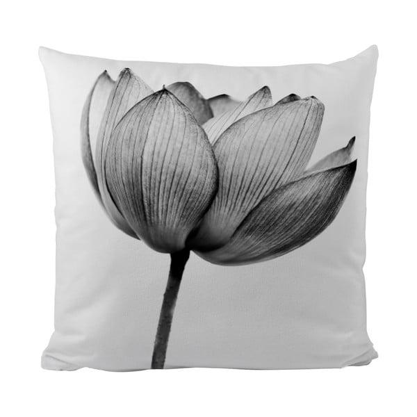 Poduszka Black Shake Tulip, 50x50 cm