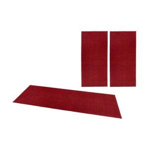 Zestaw 3 czerwonych dywanów Hanse Home Pure