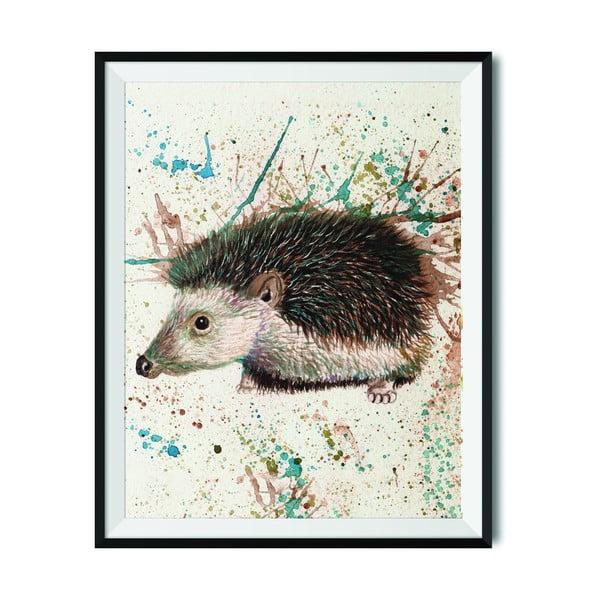 Plakat Wraptious Splatter Hedgehog