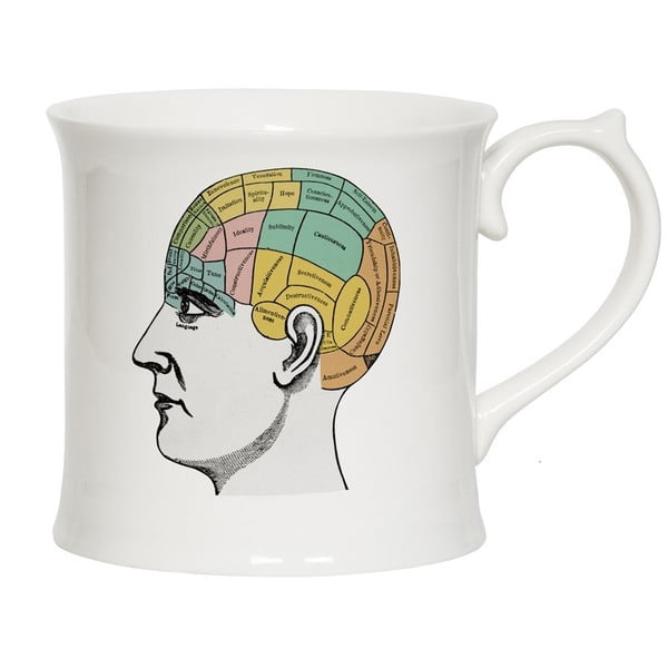 Kubek Curious Phrenology