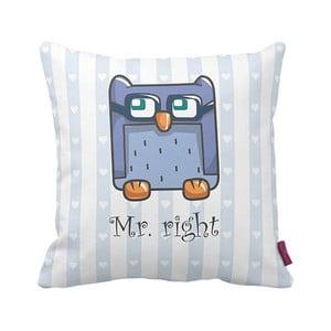 Poduszka Mr Owl, 43x43 cm