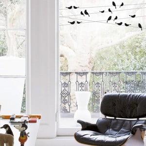 Naklejka na okno Ptaki