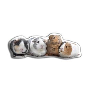 Poduszeczka Adorable Cushions Świnki morskie