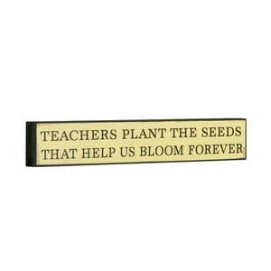Tablica Teachers plant the seeds, 5x30 cm