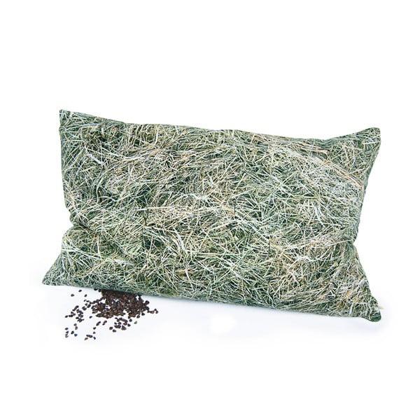 Poduszka z wypełnieniem z gryki Hayka Siano, 50x30 cm