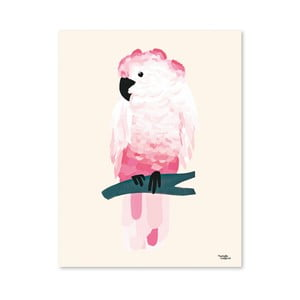 Plakat Michelle Carlslund Pink Cockatoo, 50x70cm