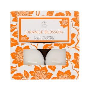 Podgrzewacze Spring Couture 8 sztuk, aromat pomarańczy