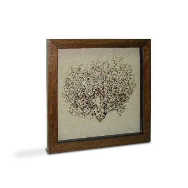 Obrazek Tree Diana, 60x60 cm