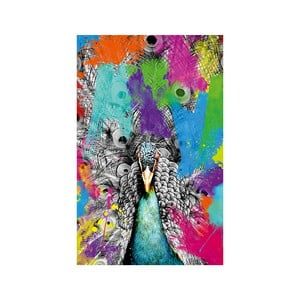 Obraz Proud Peacock, 45 x 70 cm