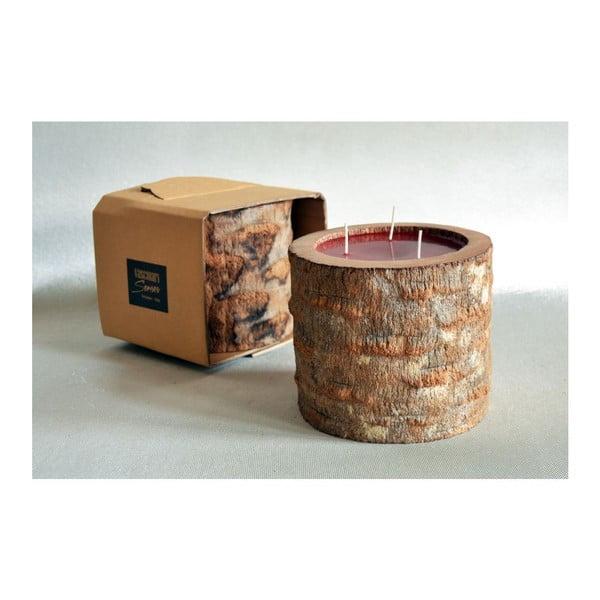 Palmowa świeczka Legno Ebony o zapachu owoców egzotycznych, 100 godz.