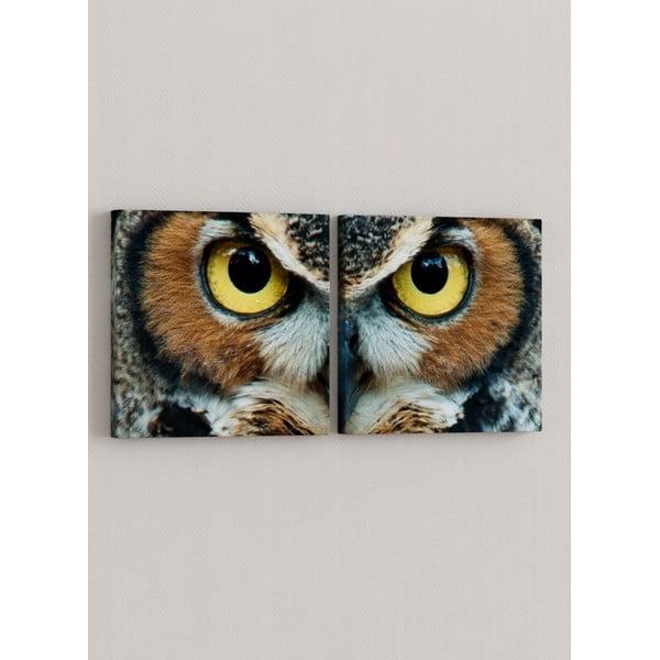 Zestaw 2 obrazów Oczy sowy