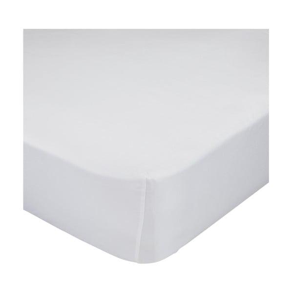 Białe elastyczne prześcieradło bawełniane Baleno Mr. Fox Happynois, 90x200 cm