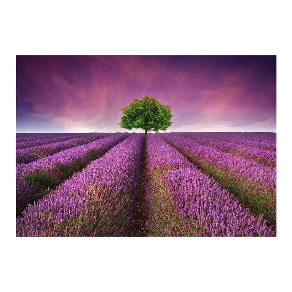 Dywan winylowy Lavender Field, 52x75 cm