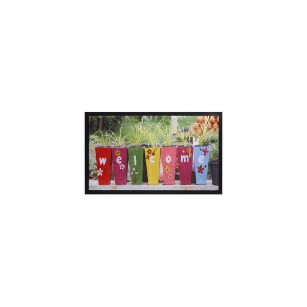 Wycieraczka Flowerpots Welcome, 45x75 cm