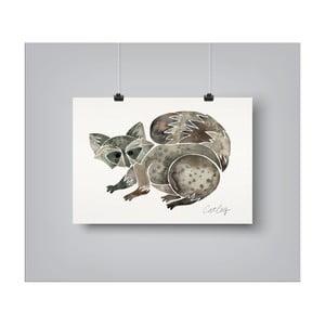 Plakat Americanflat Raccoon, 30x42 cm
