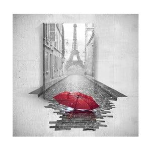 Obraz 3D Mosticx Red Umbrella In Paris, 40x60 cm