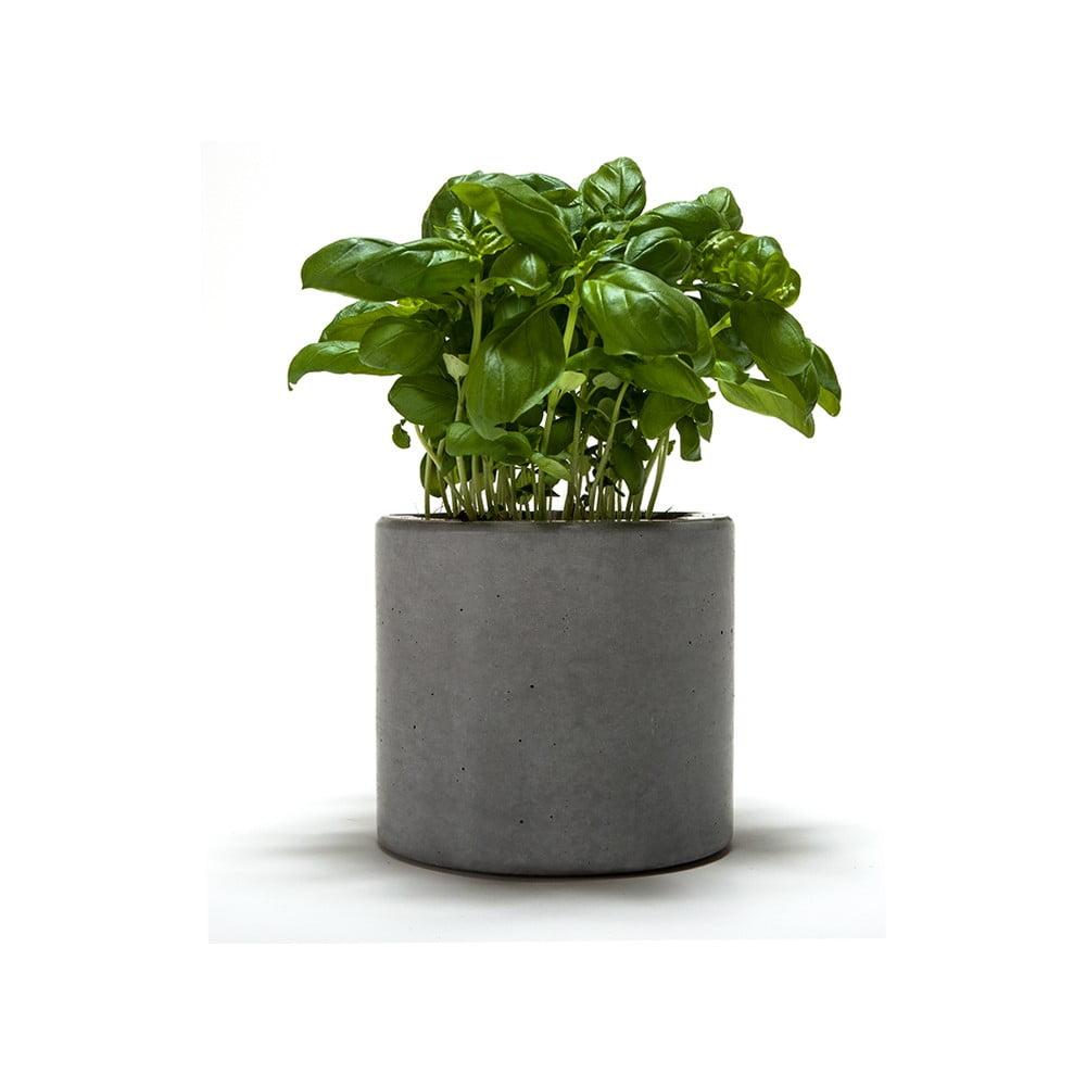 Doniczka Betonowa Spicepot 12 Bonami