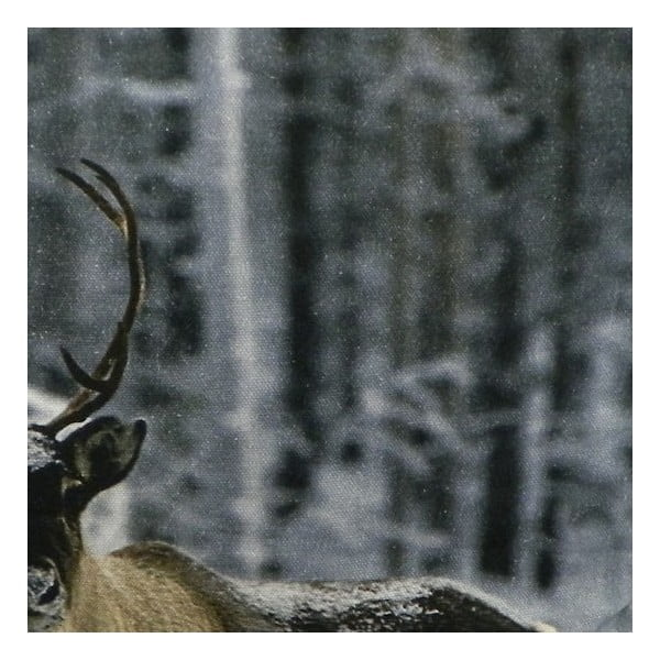 Poduszka Sepia Reindeer Nature 50x50 cm