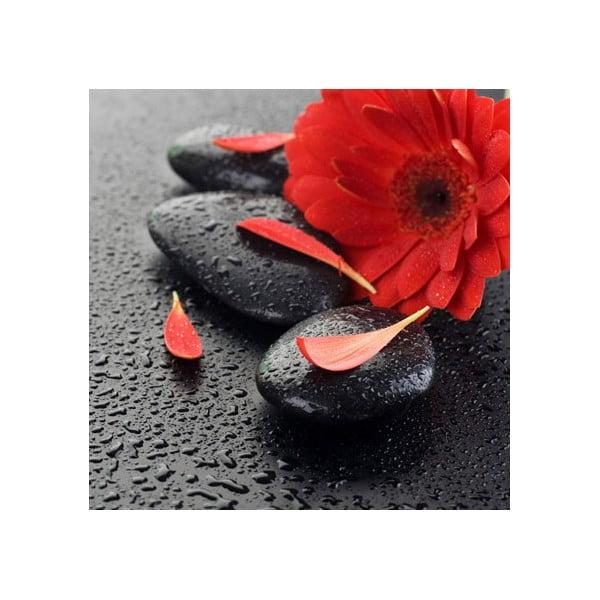 Obraz na szkle Czerwony kwiat, 50x50 cm