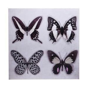 Obraz Ewax Black Butterflies, 60x60 cm