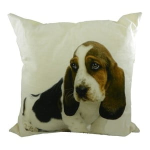 Poduszka Basset Pup 50x50 cm